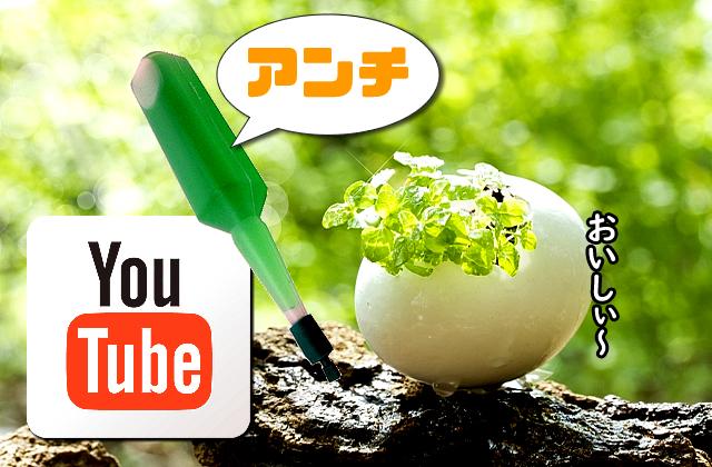 YouTubeのアンチコメントは養分で人気の証拠!誹謗中傷に対する抵抗力は必須