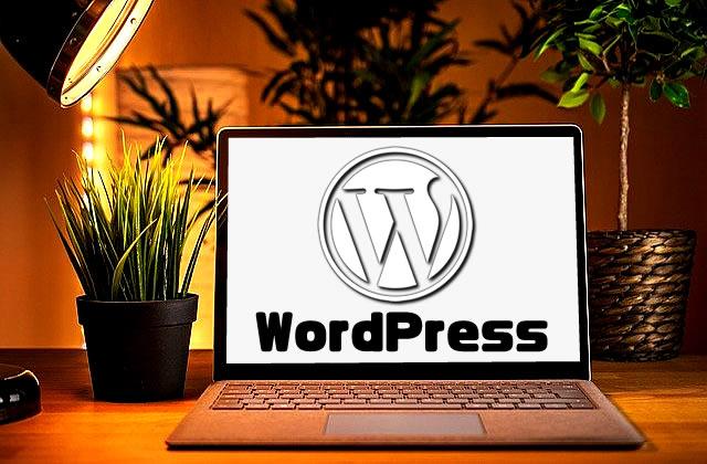 【副業初心者】WordPressでブログ100記事書いたら稼げる?【SEO最強神話の真実】