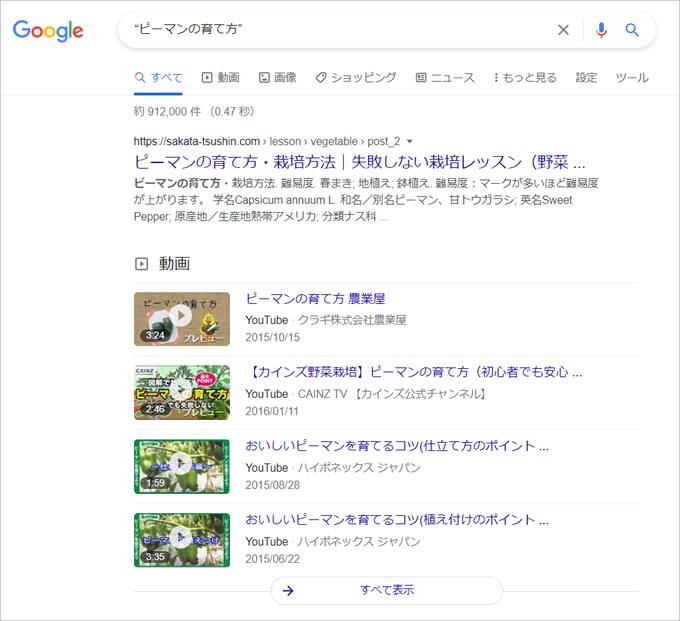 Google検索で裏技的(特殊)な検索をする方法③