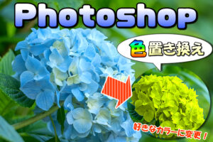 【Photoshop】画像の色を他の色の置き換える方法【多彩なカラーに変更】