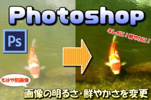 【Photoshop】画像の明るさや色彩を調整(変更)して鮮明(綺麗)に見せる方法【色調補正】