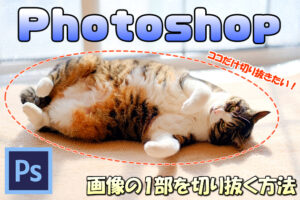 【Photoshop】画像の一部(人や物)を切り抜いて背景を消す(透明にする)方法【合成加工に必須】