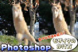 【Photoshop】画像にモザイクをかける複数のパターンと方法【著作権対策にも!】