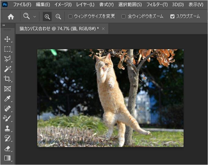 Photoshop(フォトショップ)で画像カンバスを一瞬で合わせる方法⑤