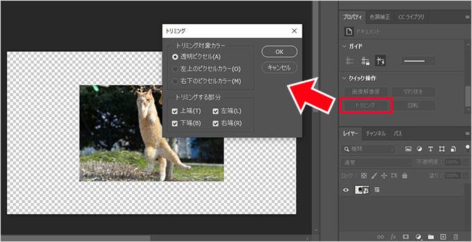 Photoshop(フォトショップ)で画像カンバスを一瞬で合わせる方法⑩