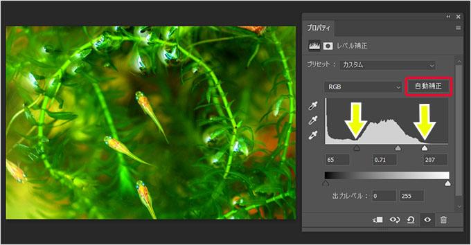 Photoshop(フォトショップ)で画像の明るさや色彩を調整して綺麗に見せる方法⑧