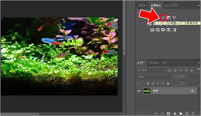 Photoshop(フォトショップ)で画像の明るさや色彩を調整して綺麗に見せる方法⑨