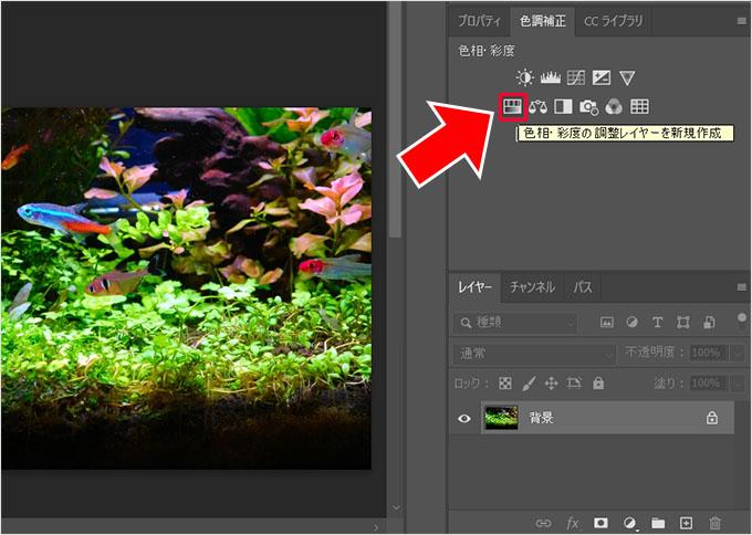 Photoshop(フォトショップ)で画像の明るさや色彩を調整して綺麗に見せる方法⑬