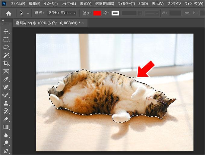 Photoshop(フォトショップ)を使って画像の1部だけを切り取る方法⑰