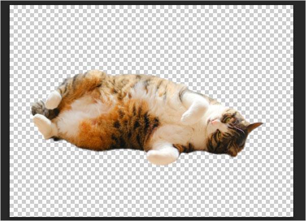 Photoshop(フォトショップ)を使って画像の1部だけを切り取る方法⑳