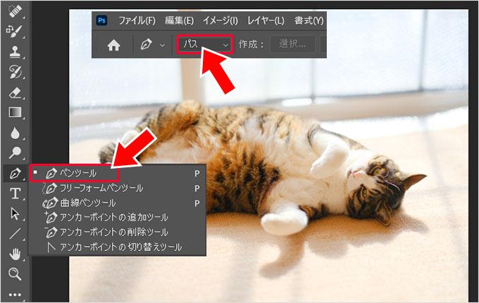 Photoshop(フォトショップ)を使って画像の1部だけを切り取る方法㉒