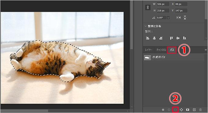 Photoshop(フォトショップ)を使って画像の1部だけを切り取る方法㉔