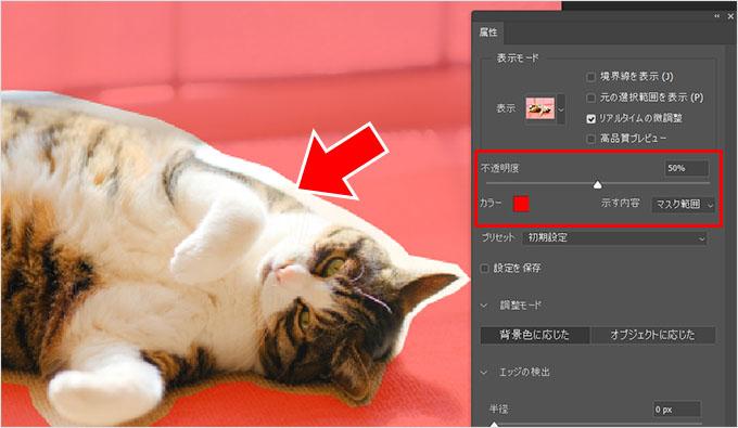 Photoshop(フォトショップ)を使って画像の1部だけを切り取る方法㉗