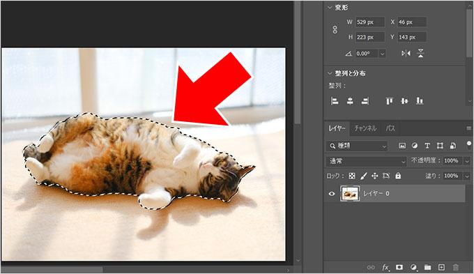 Photoshop(フォトショップ)を使って画像の1部だけを切り取る方法㉙