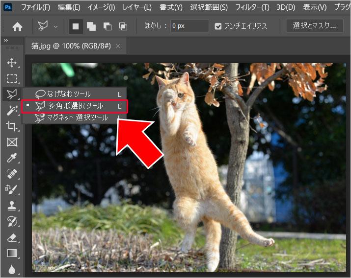 Photoshop(フォトショップ)を使って画像の1部だけを切り取る方法㉚