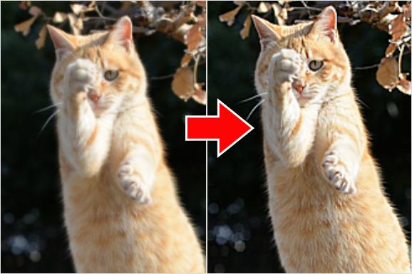 Photoshop(フォトショップ)で画像(写真)のブレ(ボカシ)を修正して見た目を引き立てる方法③